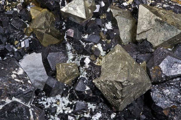 Black crystals of magnetite amid gold crystals of pyrite
