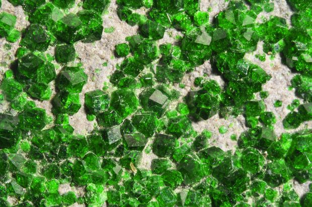 Lots of shiny little kelly green crystals on a light brown matrix