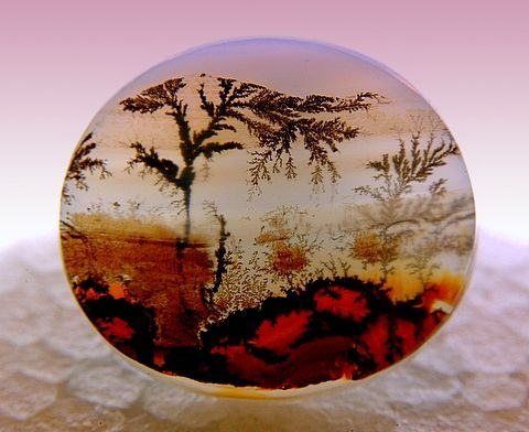 An agate that looks like a red African savannah with a big scraggly tree overhead.