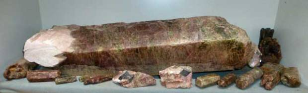 A long, hexagonal crystal in a muted swirl of red and green that makes it appear brown from far off. It is surrounded by other crystals of the same shape and color, but much smaller. The photo doesn't show scale very well.