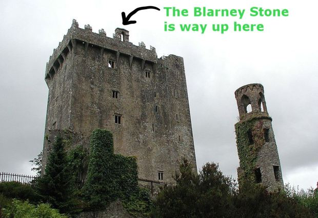 A gray castle towering over the trees planted around it, with an arrow showing that the Blarney Stone is at the top.