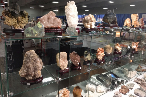 Glass shelves full of interesting minerals and rocks for sale