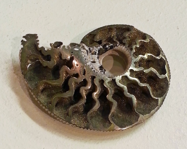A small ammonite fossil with gold sparkles of pyrite