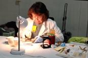 Scientist mounting specimen museum science city dino lab