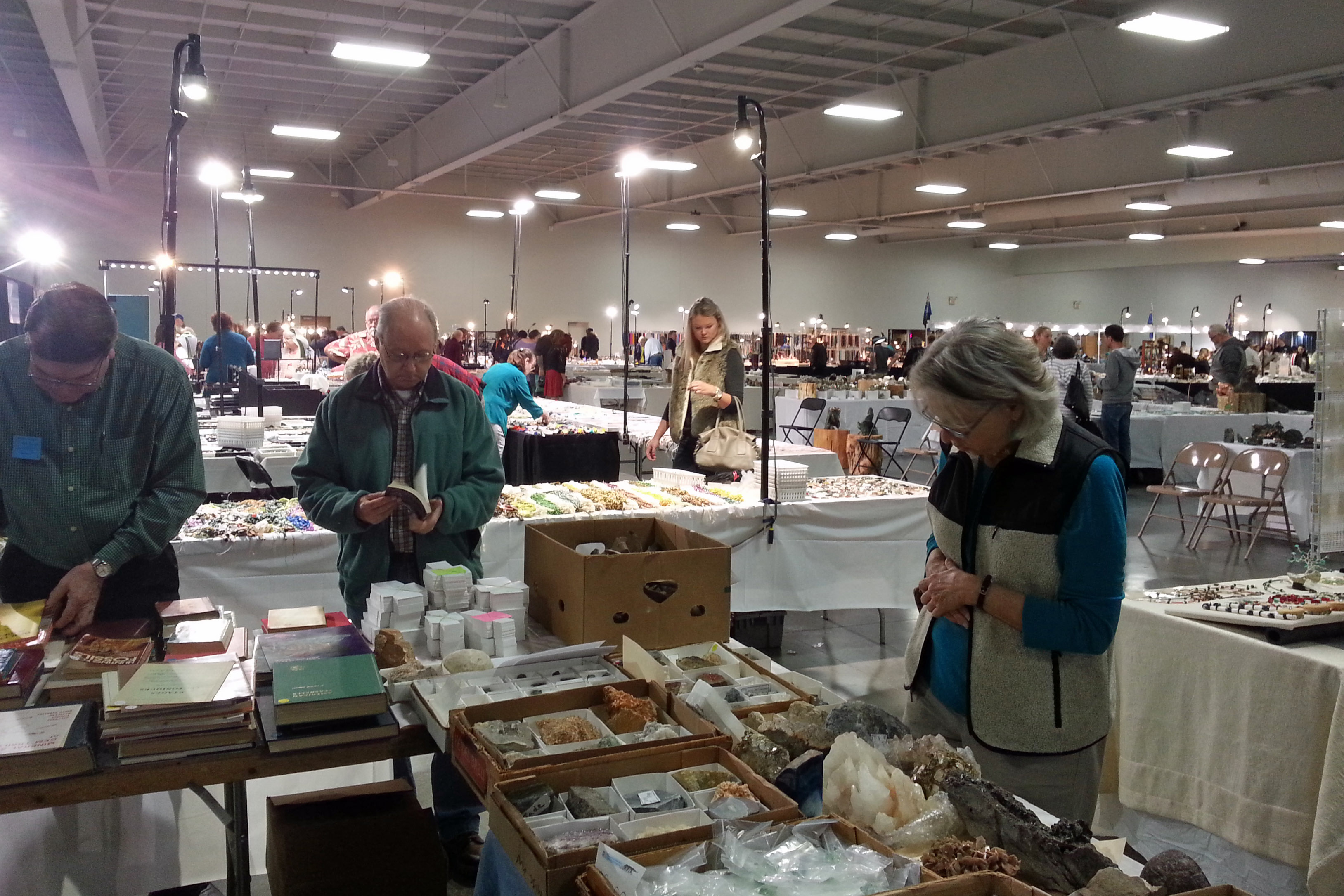 selling rocks and books convention customers