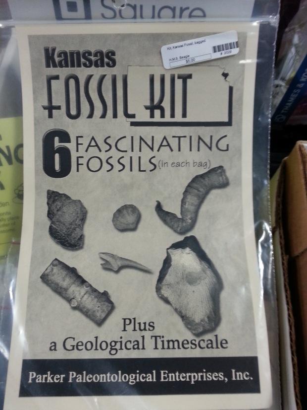kansas fossils
