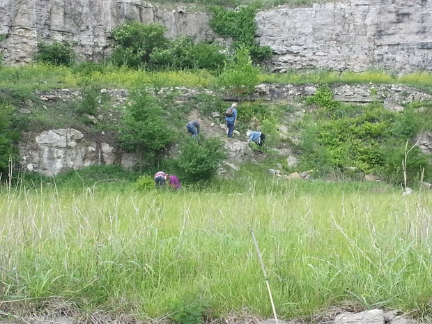People climbing and finding fossils in Missouri, looking for fossils