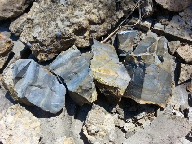 blue shale rocks in a row from kansas city mo