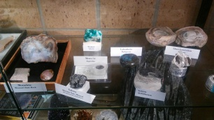 Specimens from members collections