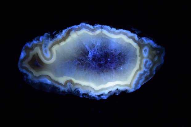 Fairburn Agate from South Dakota, photographed under longwave UV light.
